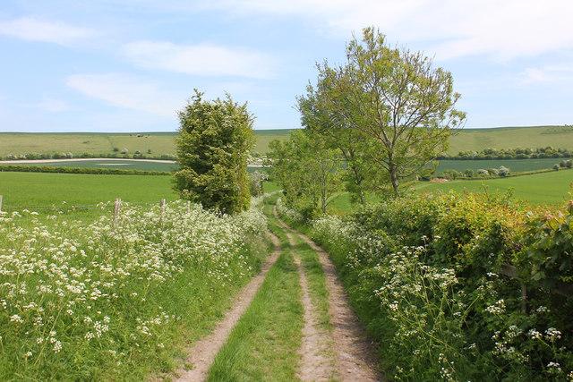Near Folly Farm