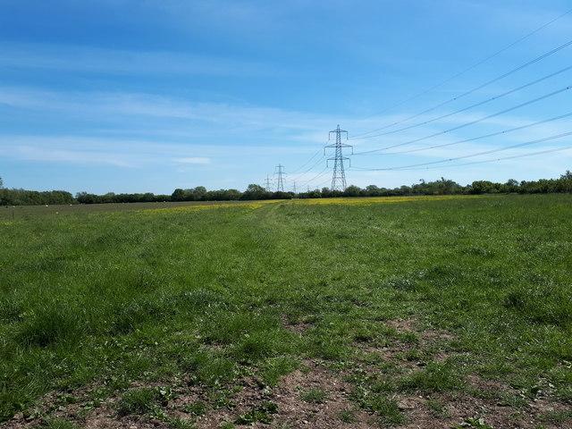Public footpath to Shifford