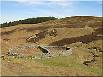 NY8753 : Sheepfold below Washpool Hill (2) by Mike Quinn