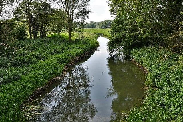 Oakley: The River Dove