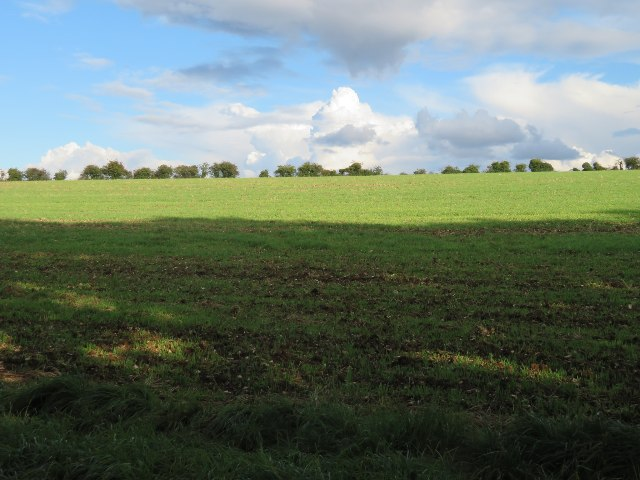 Field north of Maidenthorn Lane