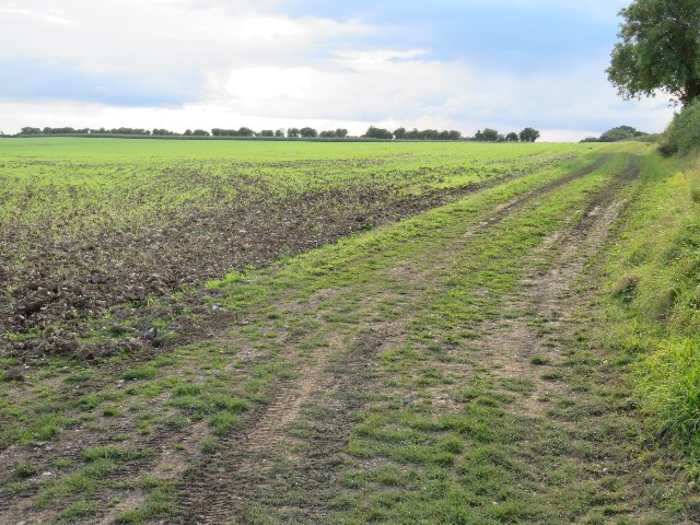Farm track north of Maidenthorn Lane