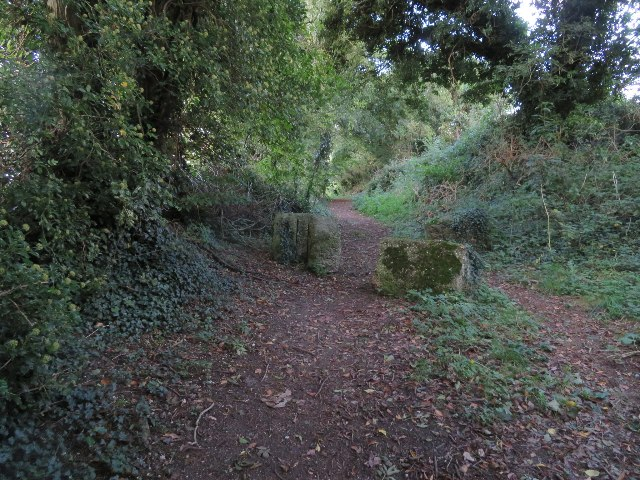 Footpath out of North Waltham