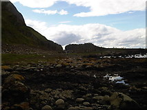 C9444 : Looking West towards the Giant's Causeway by Martyn Pattison