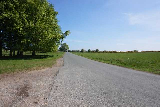 Headlands Road towards Appleton-le-Moors