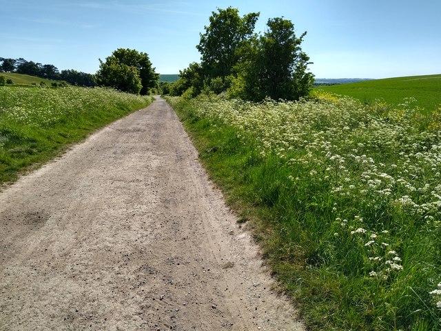 West along the Ridgeway, Foxhill, Swindon