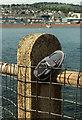 SX9372 : Lost shoe, Shaldon by Derek Harper