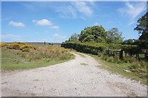 SE7290 : Footpath off Anserdale Lane by Ian S
