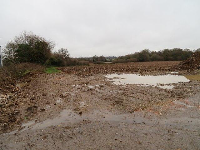 Looking into Hansfords Field (12 acres)