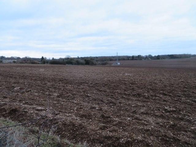 Farmland south of Oakley