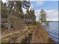 NH6234 : Path by Loch Ashie by valenta