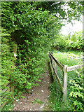 SE0028 : Overgrown hedge obstructing Wadsworth Footpath 75, Link 1 by Humphrey Bolton