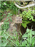 SE0028 : Remains of a penstock on a watercourse, Chiserley by Humphrey Bolton