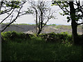 SD5378 : Holme Park Quarry by Hugh Venables