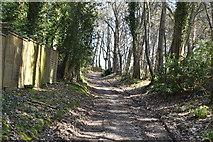TQ6042 : Home Farm Lane by N Chadwick