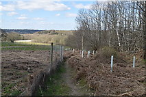 TQ6142 : Footpath to North Farm by N Chadwick