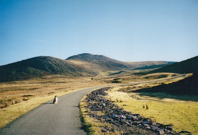 Lon Marchlyn Road with the Fronllwyd and Carnedd y Filiast in the background