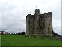 N8056 : Trim Castle by Matthew Chadwick
