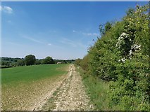SK4995 : Path above Firsby Reservoir by Chris Morgan