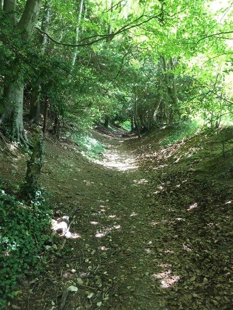 Box Hill Road