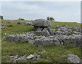 SD5479 : Limestone outcrops, Newbiggin Crags by Hugh Venables