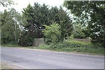 TF0819 : No footpath by Bob Harvey