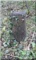 SE3622 : Old Boundary Marker by D Garside