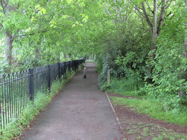 Path by the Vyne School by Sandy B