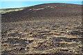 NT1238 : Burnt heather, Broughton Hope by Jim Barton