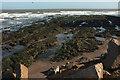 SX9778 : Wave-cut platform, Langstone Rock by Derek Harper