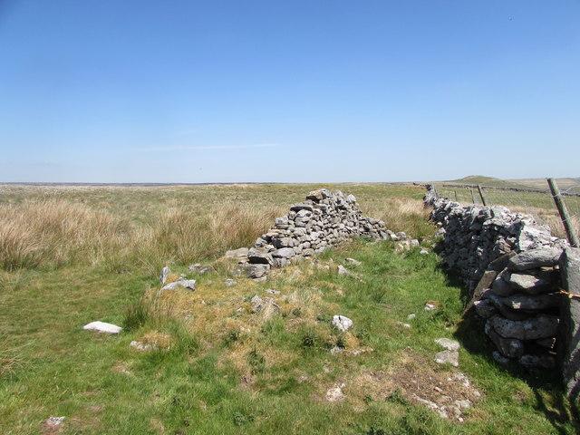 Old Sheep Fold on Fancarl Top