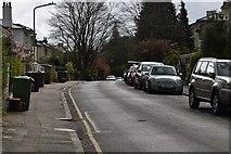 TQ5939 : Beulah Rd by N Chadwick