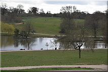 TQ5939 : Dunorlan Lake by N Chadwick