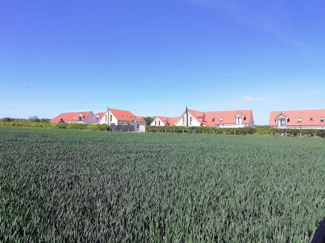 Red roofed new houses