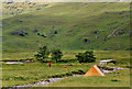 NG8704 : Camping at Barrisdale by Nigel Brown