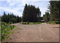 NH5235 : Track junction, Druim Bà Forest by Craig Wallace