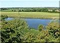 SK6944 : River Trent near East Bridgford by Alan Murray-Rust