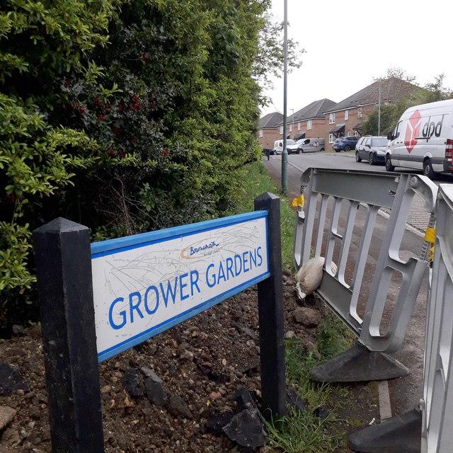 West Howe: Grower Gardens