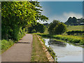 SD7908 : Manchester, Bolton and Bury Canal Towpath by David Dixon