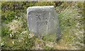 SD9737 : Old Boundary Marker by D Garside