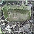 SE2211 : Old Boundary Marker by D Garside
