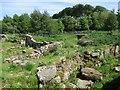 NS9242 : Ruins of Hyndford Mill by Alan O'Dowd