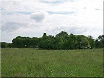 R4653 : Castles of Munster: Ballyculhane, Limerick (1) by Garry Dickinson