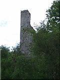 R4453 : Castles of Munster: Bolane, Limerick by Garry Dickinson