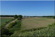 SE6141 : Farmland from the railway bridge by DS Pugh