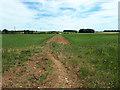 SP1808 : Bridleway towards Eastleach Downs Farm by Vieve Forward