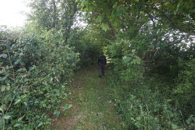 Path to Bustardnest Fox Covert by Ian S