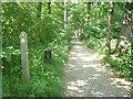 SE3527 : Oulton Park golf course - permissive path by Stephen Craven