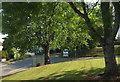 SX8965 : Hospital entrance road by Derek Harper