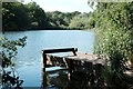 SO6010 : Fishing platform at Cannop Ponds by John Winder